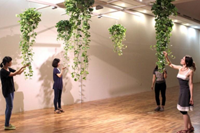Exposition « Résonances végétales » – Solutré Pouilly (76) Du 27 avril au 15 janvier 2014