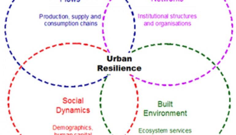 Resilience Alliance: Un organisme de recherche international de scientifiques et de praticiens de plusieurs disciplines