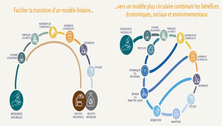 Intégrer l'économie circulaire dans les entreprises (Part I) – Sandrine Hosti