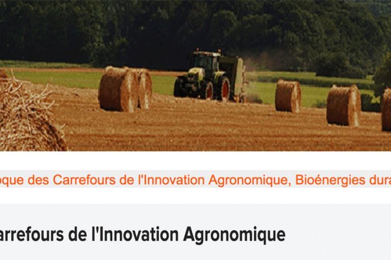 CIAg Alimentation – Bioénergies durables : innovations dans les territoires et les filières – Reims le 22 novembre